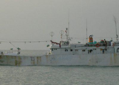 Fisch-Trawler